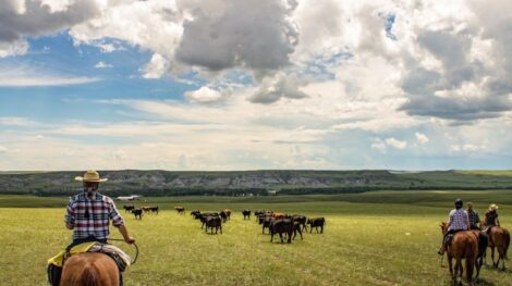 Spring – Horseback, Bear Creek Guest Ranch