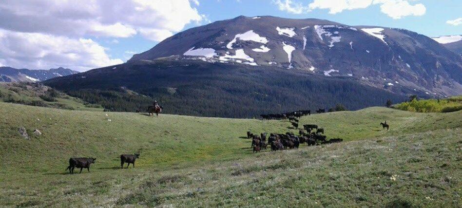 Equipment List, Bear Creek Guest Ranch